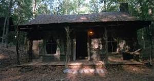 cabin 2013