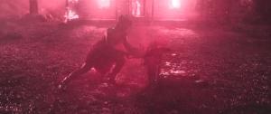 evil_dead_2013___gif__by_shadow_of_nemo-d6bsatk