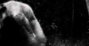 cave creature photo